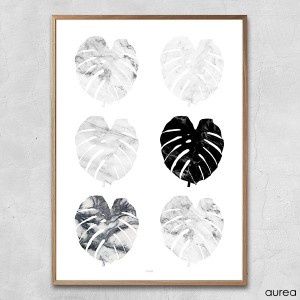 plakat_aurea_monstera_collage (2)